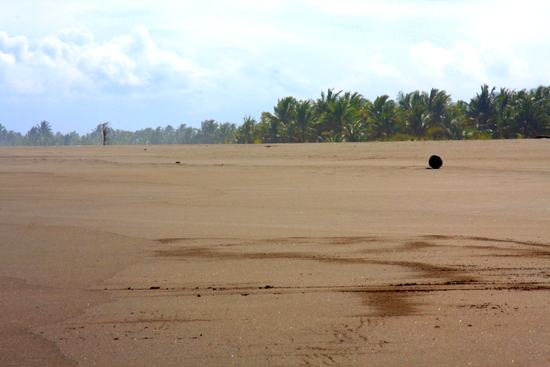 Pangandaran's beach is so long that sections are deserted