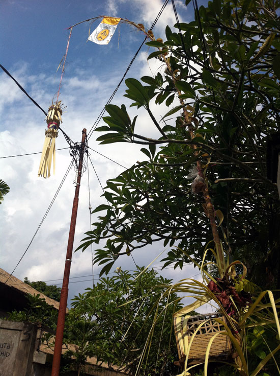 A Balinese penjor narrowly avoids tangling with electrical wire.