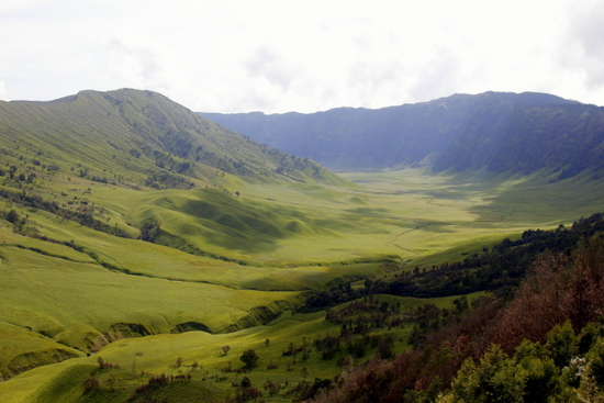 An incredible savanna around the back of Gunung Bromo