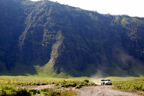 Jeeps making their way across the savanna around the back of Gunung Bromo