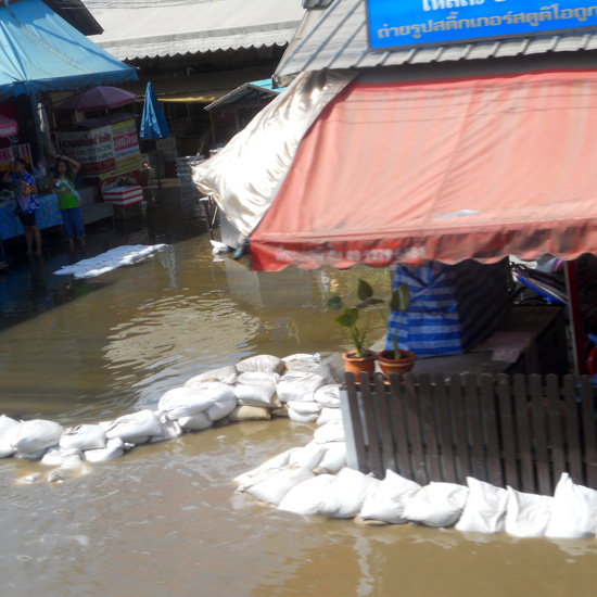 Another floating market in the making.