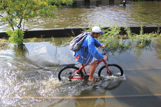 Man bikes through flood water in Lak Si, Northern Bangkok.