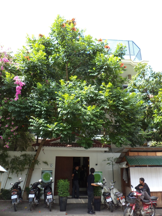 Privacy courtesy of a very big bougainvillea