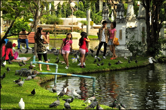 feeding the pigeons is a popular local pastime (since there's no ducks!)