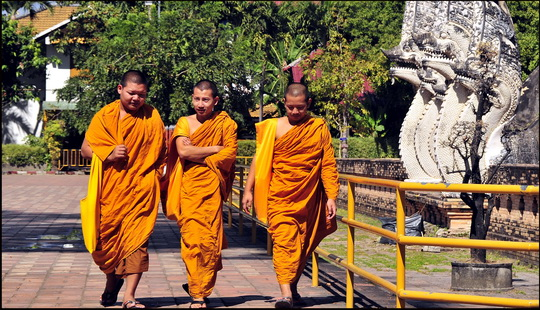 Young monks heading to the chat room