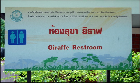 Not many zoos where the animals have their own restrooms!