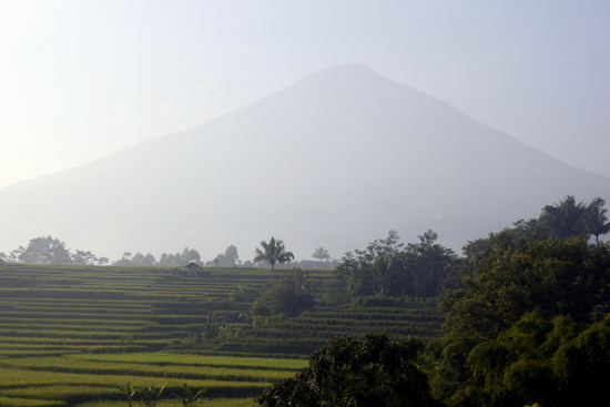 At 2818m above sea level, Gunung Cikuray dominates the surrounding area