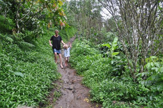 Munduk: Wet season impromptu slip 'n slide.