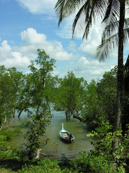 A romantic ride through the mangroves?