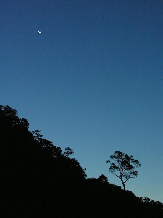 A new moon rises over wild Ko Surin.