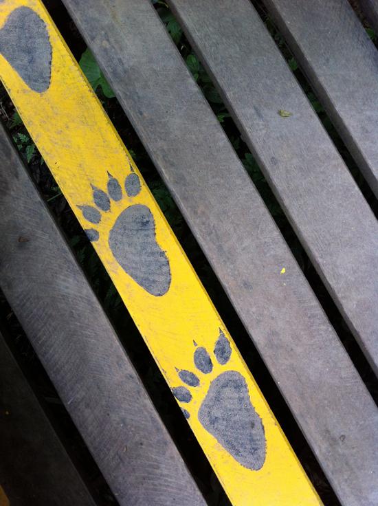 Boardwalk at the Tat Kuang Si Bear Rescue Centre.