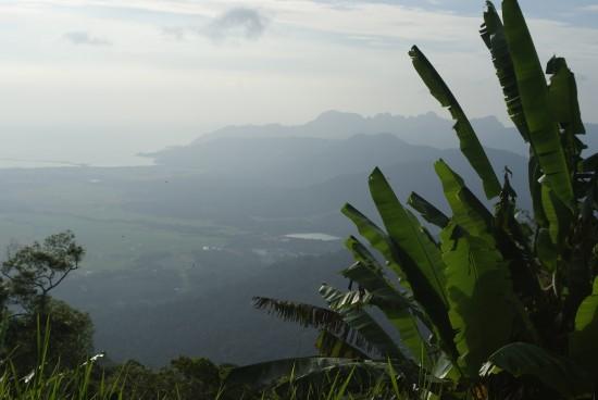 The panoramic vista from Gunung Raya.