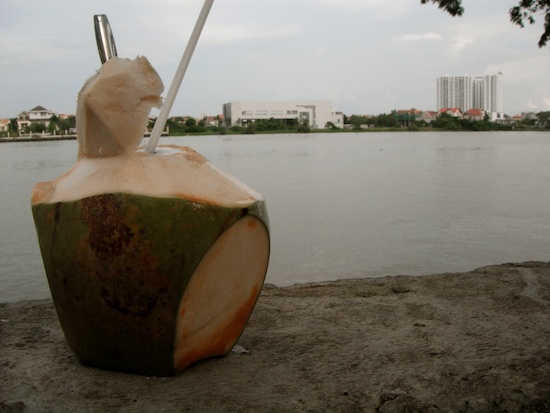 Coconut in picture is smaller than it appears.