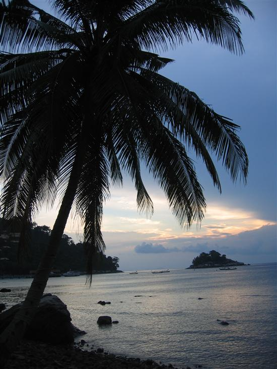 No matter how you get there, Tioman is a world away from Singapore!