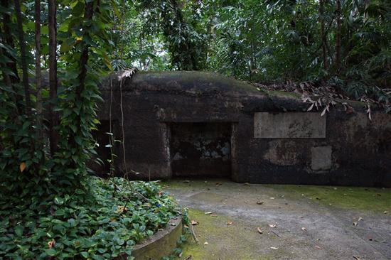 Come for the jungle, stay for the WW2 relics