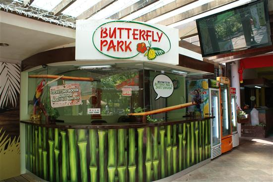The Butterfly Park is one of Sentosa's few indoor attractions.