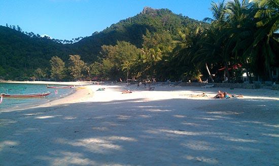 Bottle Beachscape