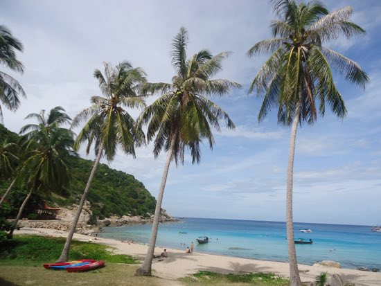 What is the best island in thailand - Ko tao dive resort ...