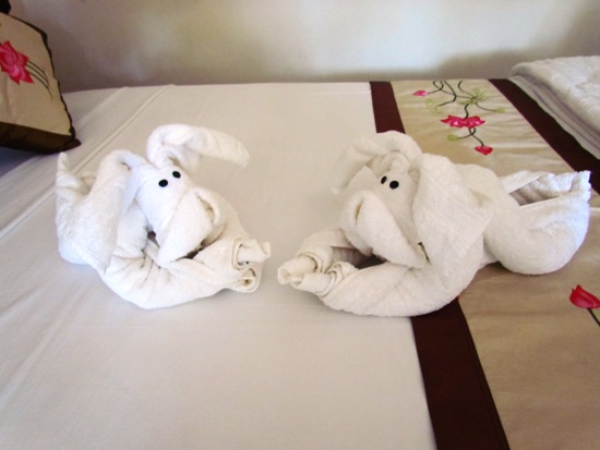 Could you resist the puppy dog towels.. we couldn't!