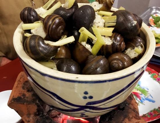 DL_Quan 33_snails