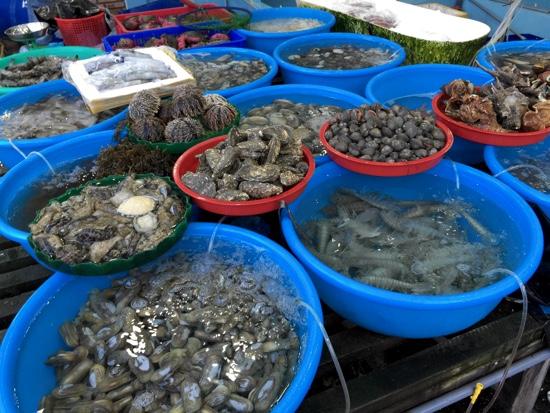 NT_Lang Chai Hai San Dai Duong seafood_daily catch